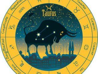 Welches Sternzeichen passt zu Stier?